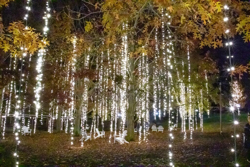 Lights at Antler Hill Village