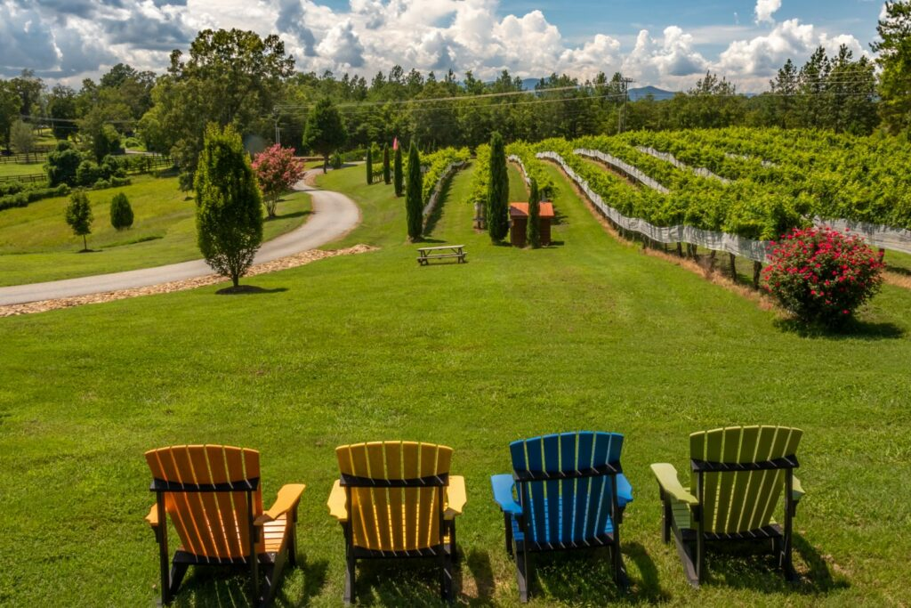 Overmountain Vineyards