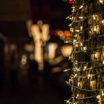 Holiday Lights and Wine Tour