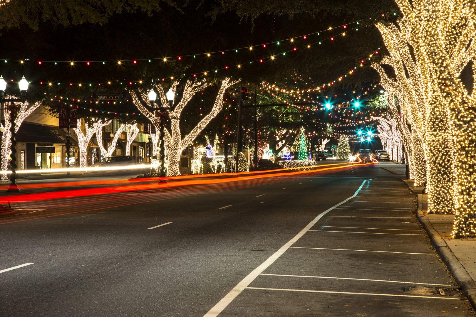 Forest City Lights