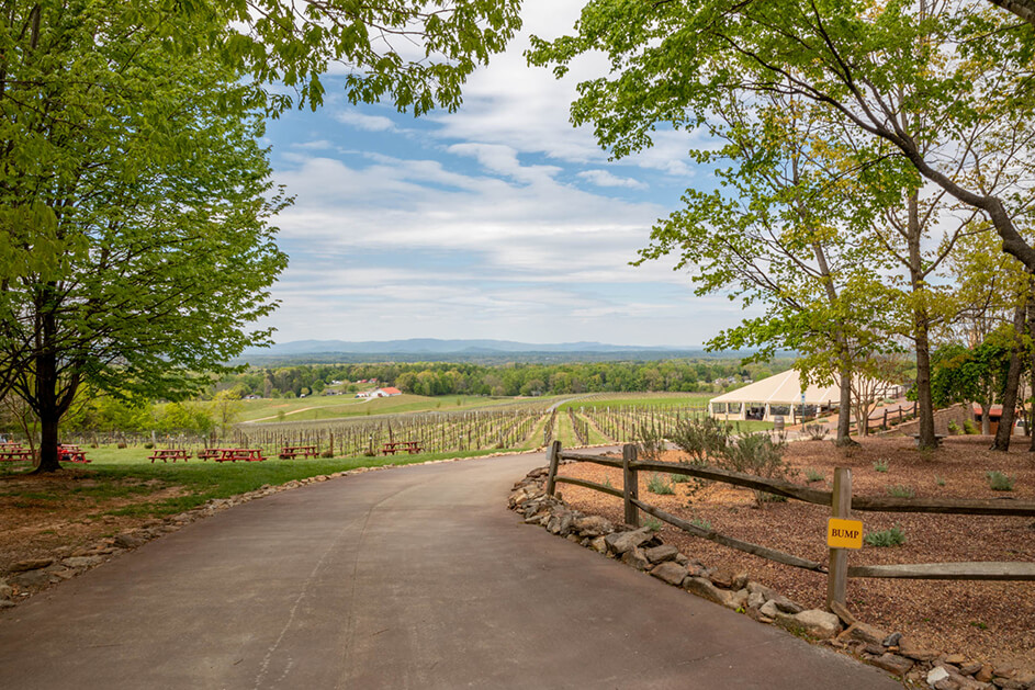 North Carolina Wine Tours