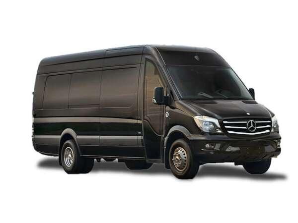 14 Passenger Luxury Van